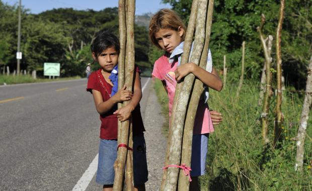 Niños van a la escuela, pero a menudo tienen la responsabilidad de recolectar leña.