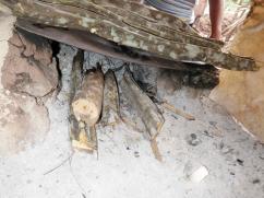 Los bosques en las zonas pobladas están bajo una tremenda presión en cuanto a la agricultura y la cocina.